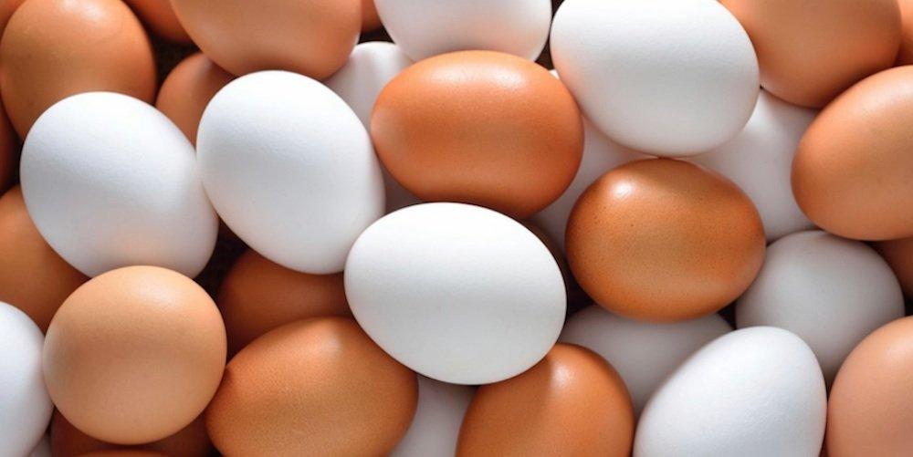 Superalimento: el huevo